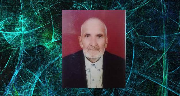 Asırlık çınar 104 yaşında öldü