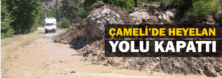 ÇAMELİ'DE HEYELAN YOLU KAPATTI