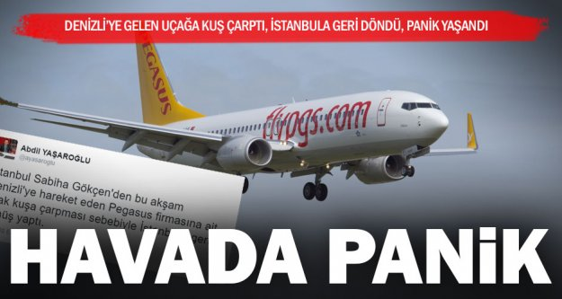 Kuş çarptı, uçak İstanbul'a döndü