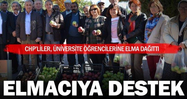 Üniversite öğrencilerine elma dağıttılar