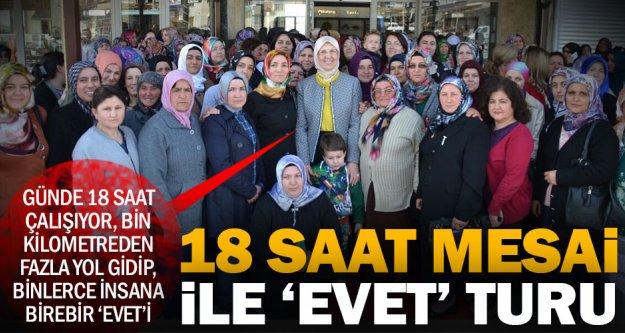 Ramazanoğlu'nun referandum çalışmaları tam gaz