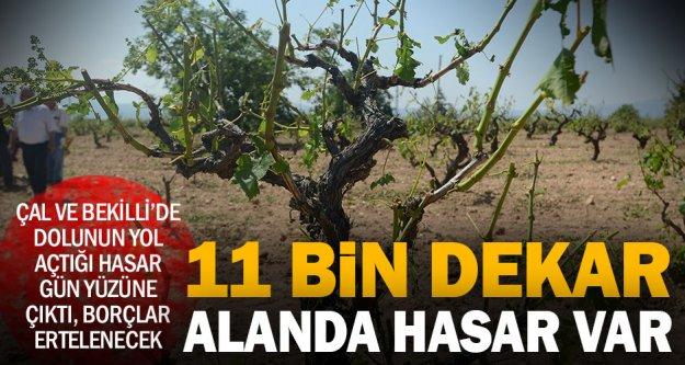 Çal ve Bekilli'de 11 bin dekar ve binlerce çiftçi zararda