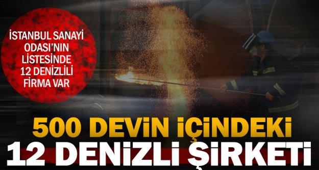 Denizlili 12 dev, Türkiye'nin 500 devinin içinde