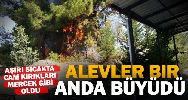 Kelekçi'de aile sağlığı merkezi yanındaki orman yangını korkuttu