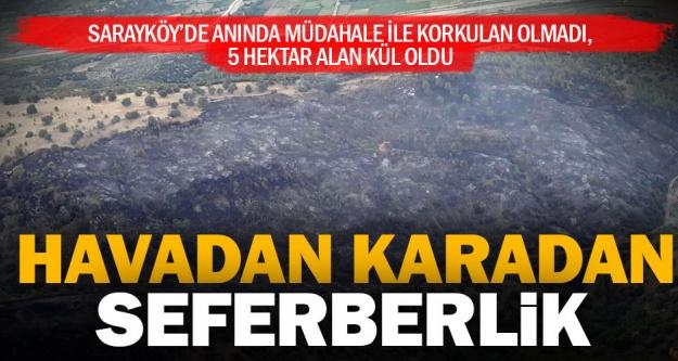 Sarayköy'de 5 hektar ormanlık alan kül oldu