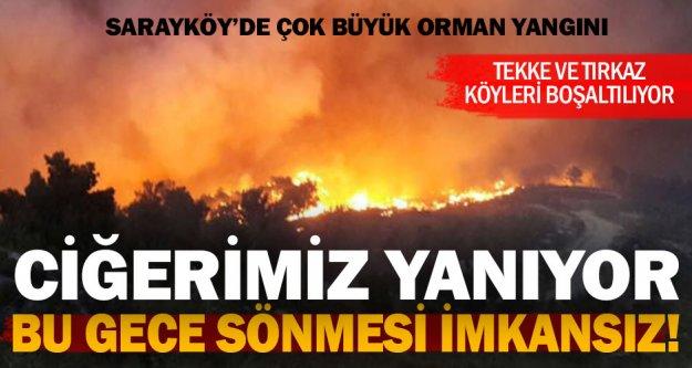 Sarayköy'de ciğerimizi yakan orman yangını