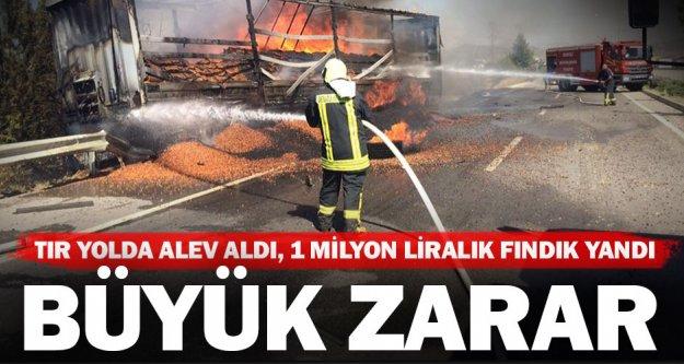 Kaklık'taki yangında 1 milyon liralık fındık yandı