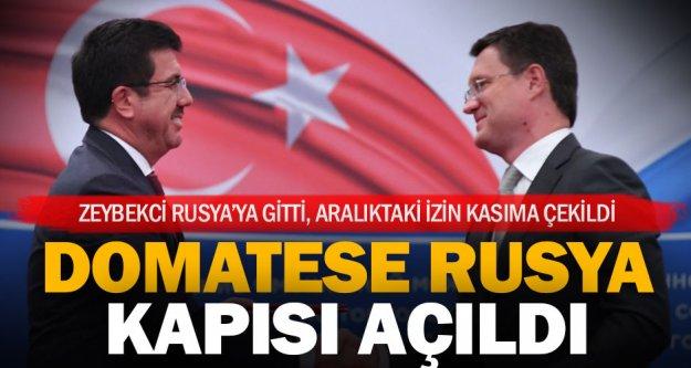 Rusya, Türkiye'ye domates için daha erken izin verebilir