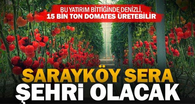 Sarayköy'e dev kapasiteli tarım organize sanayi bölgesi