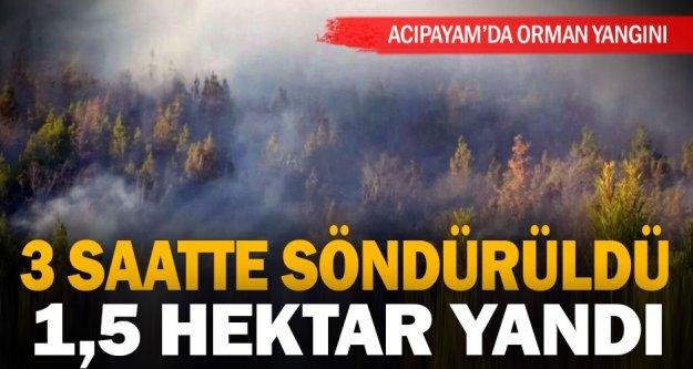 Alevler, Acıpayam'da 1,5 hektar kızılçam ormanını küle çevirdi