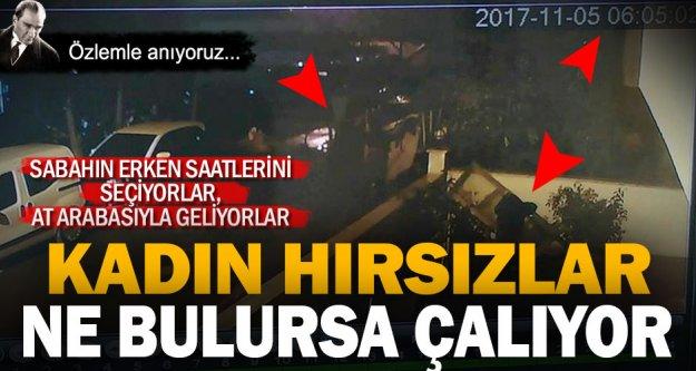 At arabalı hırsızlar, vatandaşı canından bezdirdi