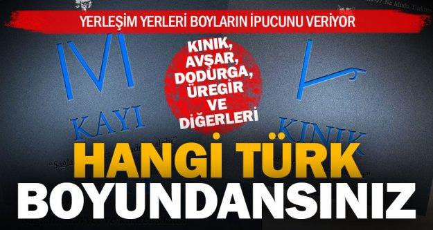Denizli'ye yerleşen hangi Türk boyundansınız?