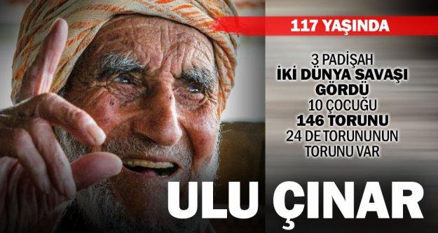 117 yaşındaki Acıpayamlı ulu çınar Şükrü Dede!