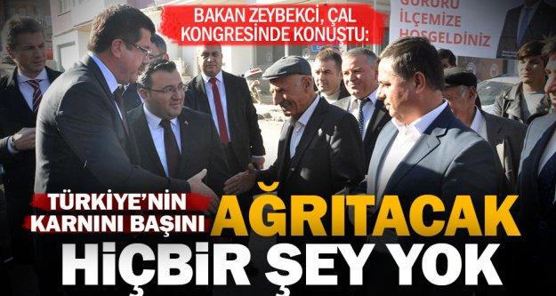 Bakan Zeybekci: Türkiye'nin karnını, başını ağrıtacak hiçbir şey yok