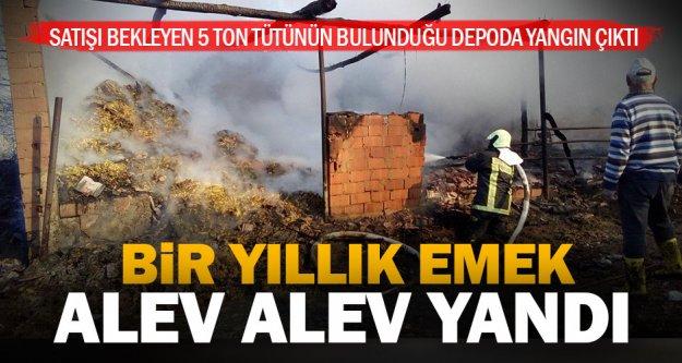 Çiftçinin bir yıllık emeği 5 ton tütün alev alev yandı