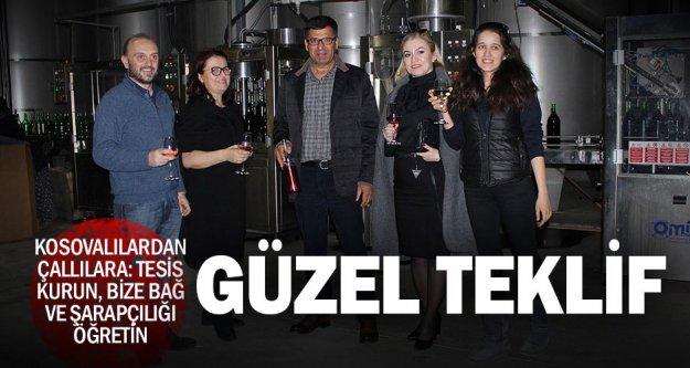 Kosovalılar, bağcılık ve şarap üretimini öğrenmek için Çal'a geldi