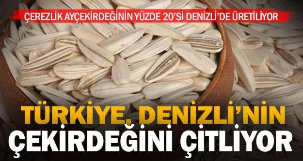 Türkiye'nin ayçekirdeği üretim lideri Denizli