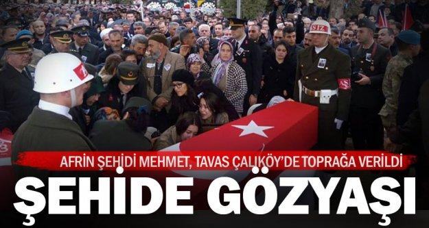 Afrin Şehidi Mehmet Dinek, Tavas'ta toprağa verildi