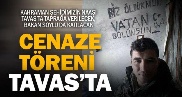 Afrin Şehidi Tavas'ta toprağa verilecek