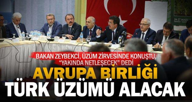 Anlaşma sağlanmak üzere: AB Türk üzümü alacak