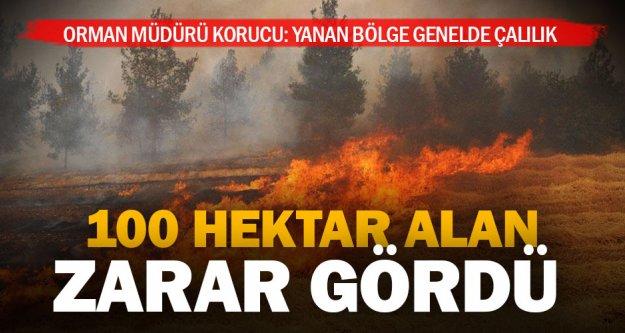 Akhan'da 100 hektar alan yandı