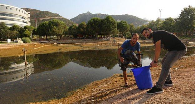 Balıklar öğrencilere emanet
