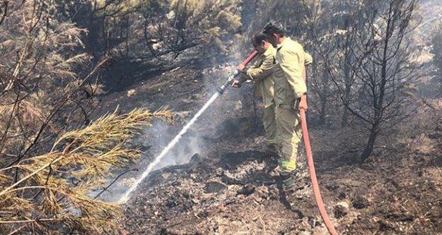 Yangın kontrol altına alındı, çıkış nedeni araştırılıyor
