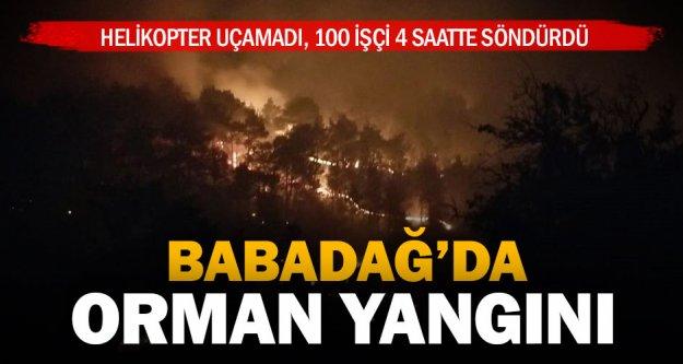 2 hektarlık ormanlık alan yandı