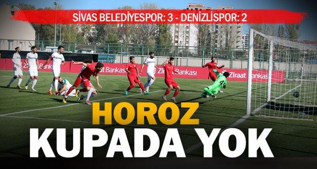 Sivas Belediyespor: 3 - Denizlispor: 2
