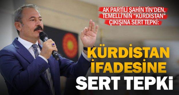 HDP'li Temelli'nin 'Kürdistan ifadesine Tin'den tepki: Bu adam ne zırvalıyor