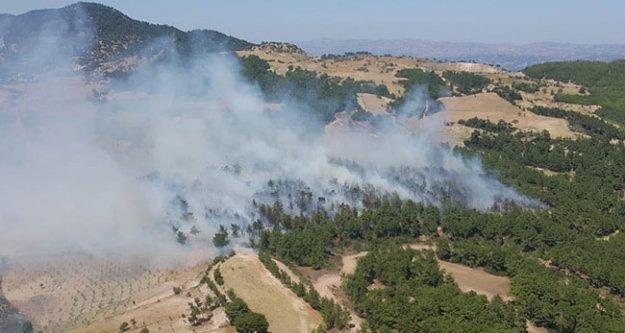 Buldan'da orman yangını