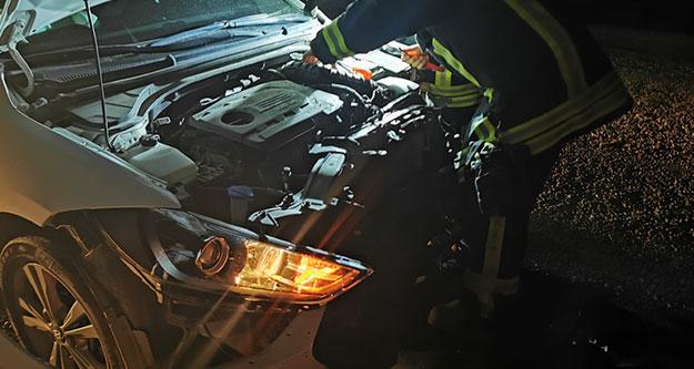 Yaban domuzuna çarpan otomobilin sürücüsü yaralandı