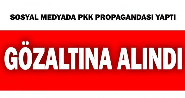 Sosyal medyada PKK propagandası yaptı, gözaltına alındı