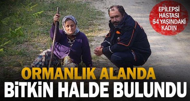Buldan'da ormanlık alanda kaybolan kadın bulundu