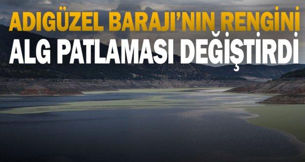 Denizli'de alg patlaması baraj gölünün rengini değiştirdi
