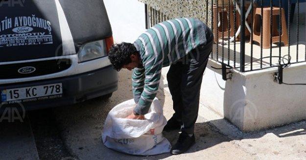 Denizli'de kar maskesiyle kablo hırsızlığı girişimi