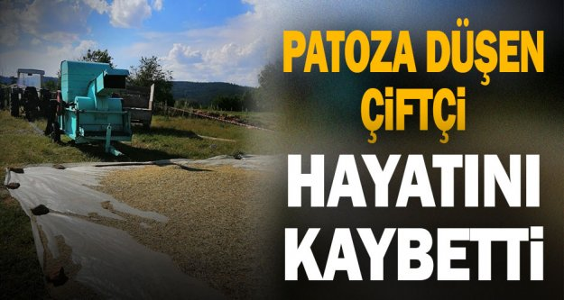 Denizli'de patoza düşen çiftçi öldü