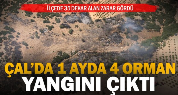 Çal'da aynı bölgede 1 ayda 4. orman yangını