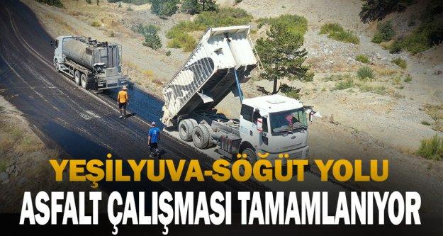 Yeşilyuva-Söğüt yolu asfalt çalışması tamamlanıyor