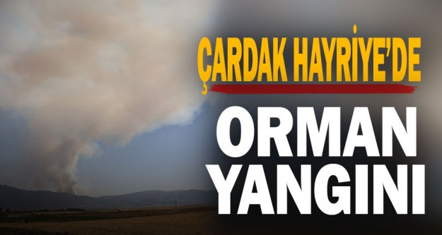 Çarda Hayriye'de orman yangını