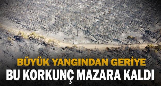 Denizli'deki orman yangınında soğutma çalışmaları sürüyor