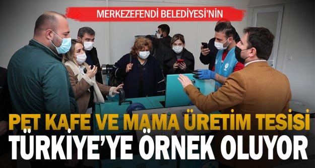 Merkezefendi Belediyesi'nin Pet Kafe ve Mama Üretim Tesisi Türkiye'ye örnek oluyor