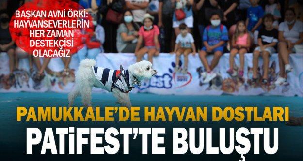 Pamukkale Belediyesi, Denizlili hayvanseverleri Patifest