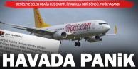 Kuş çarptı, uçak İstanbula döndü