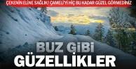 Çameliden eşsiz güzellikte 9 kar manzarası