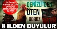 Rapçi Haykiden Türkiye güzellemesi