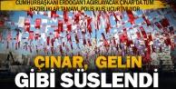 Erdoğanı bekleyen Çınarın son hali