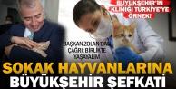 Sokak hayvanlarına Büyükşehir şefkati