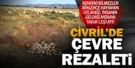 Çivril'de çevre katilleri yine işbaşında
