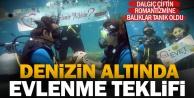 Dalgıç genç, denizin altında evlenme teklifi etti